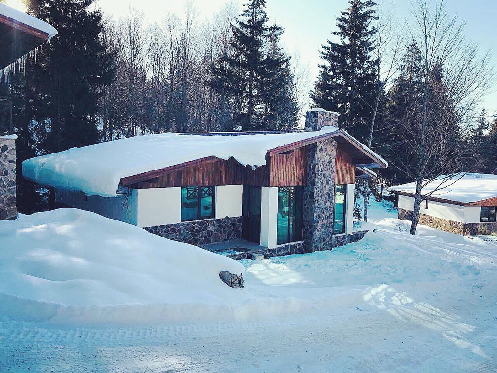 Tours Things To Do In Bakuriani Ski Resort Tour Guide Georgia
